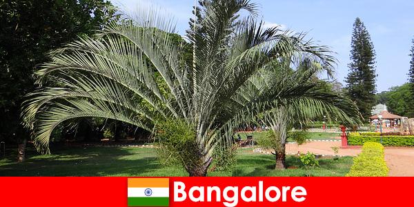 O clima tipo de Bangalore durante todo o ano vale uma viagem para todos os estrangeiros