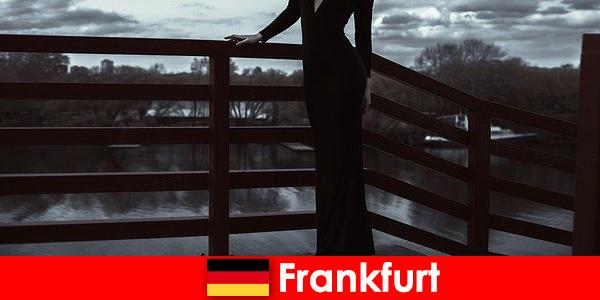 Gestores sensuais em Frankfurt am Main mimam seus clientes da cabeça aos pés
