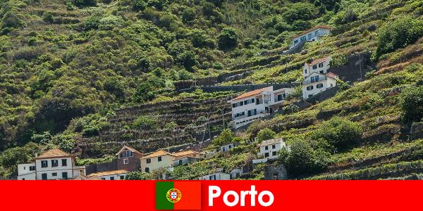 Porto de férias para amantes do vinho de todo o mundo