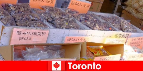 Toronto e sua gastronomia particularmente diversificada não deixarão nenhum viajante faminto