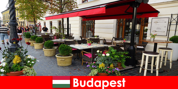Destino de férias curtas em Budapeste, Hungria para visitantes com gosto pela gastronomia sofisticada