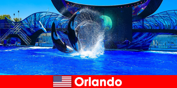 Reserve viagens individuais para estrangeiros em Orlando, Estados Unidos