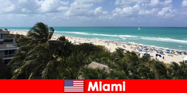 Palmeiras e ondas de areia aguardam os turistas de longa data na paradisíaca Miami, Estados Unidos