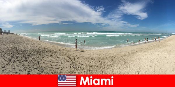 Jovens viajantes acham o caloroso Miami, Estados Unidos, empolgante, moderno e único