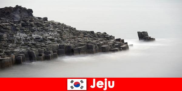 Estrangeiros estão explorando excursões populares em Jeju, Coréia do Sul